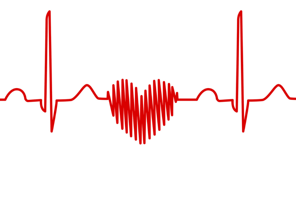 ecg line, a heart made with a red line